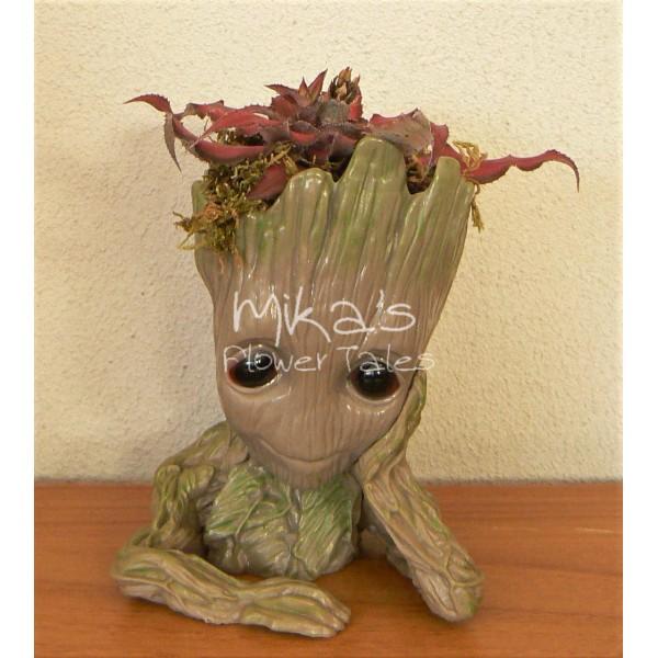 """Διακοσμητικό """"μωρό Groot"""" με μικρόφυτα ΔΙΑΚΟΣΜΗΤΙΚΑ, ΙΔΙΑΙΤΕΡΑ ΧΕΙΡΟΠΟΙΗΤΑ ΔΩΡΑ"""